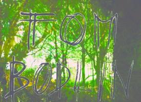 Tom Bodlin – Comme je descendais des fleuves impassibles