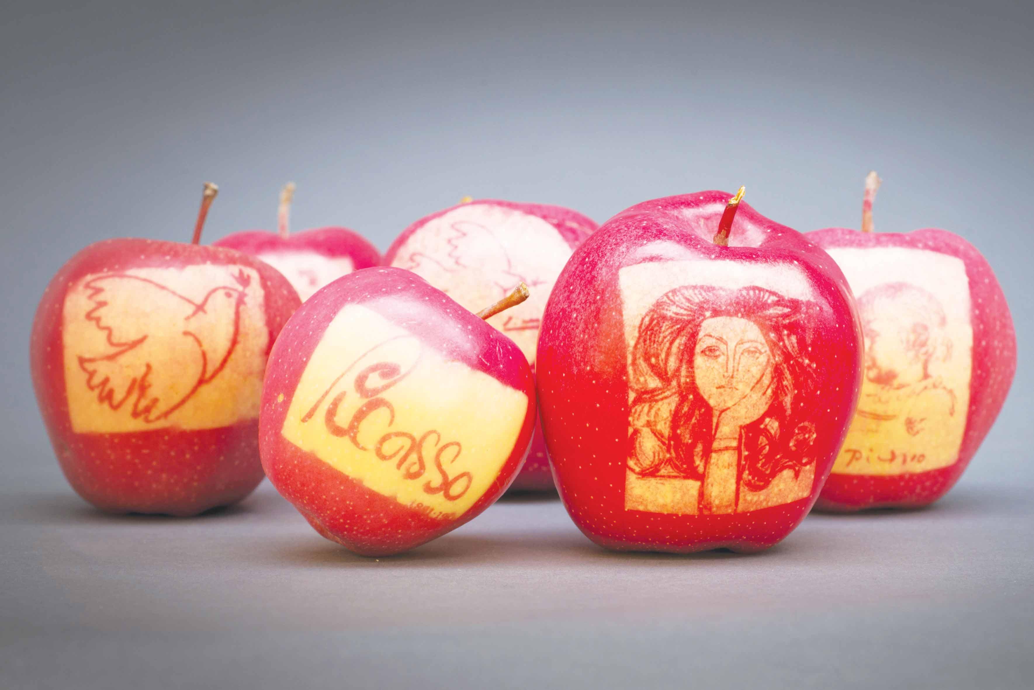 Les-Pommes-marquées-des-Jardins-Fruitiers-de-Laquenexy-8---Crédits-Conseil-Départemental-de-la-Moselle