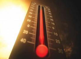 CLIMAT : «RIEN N'A CHANGÉ, TOUT A CONTINUÉ»