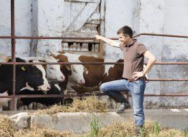 CRISE AGRICOLE : LA BANQUE POPULAIRE MOBILISÉE