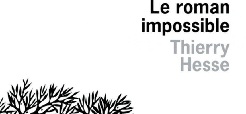 LE ROMAN IMPOSSIBLE de Thierry Hesse