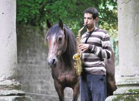 LE CHEVAL ENCHANTE LES ARTS