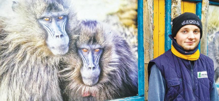 Zoo d'Amnéville : passion grandeur nature