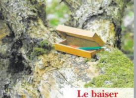 Le baiser d'Armadilli de Pierre Brasme