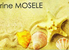 DERVICHES TOURNEURS de Catherine Mosele