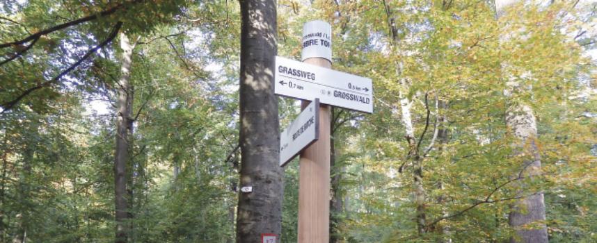 RANDO ENTRE BLIES ET SARRE : La vallée de la Blies en marchant