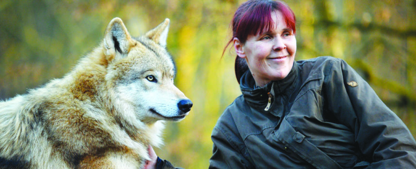 Histoires de loup à Merzig