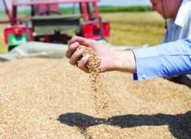 Moselle : Aides à l'emploi dans l'agriculture