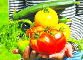 L'agriculture bio progresse