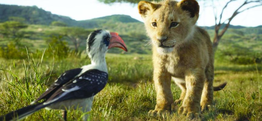 LE ROI LION de Jon Favreau
