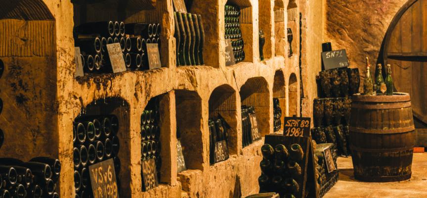 Champagne : Les producteurs réduisent la récolte