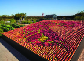 Des jardins, des saveurs et des pommes