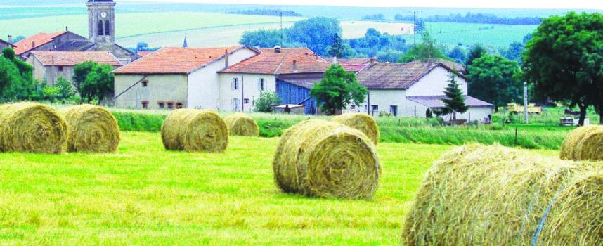 Agriculture : Un accord sur la PAC