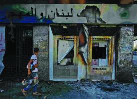 Liban : ce cèdre qu'on abat